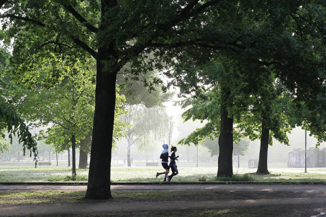 MKiŚ: Polacy zadowoleni z jakości terenów zielonych w okolicy zamieszkania