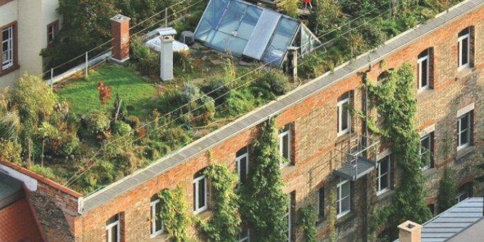 Ekologiczne technologie renowacji dachów płaskich