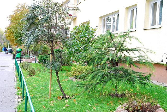Korzystanie z tarasu i ogródka - skutki podatkowe