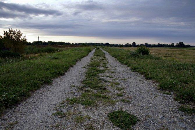 Ustanowienie służebności drogi koniecznej; Pixabay