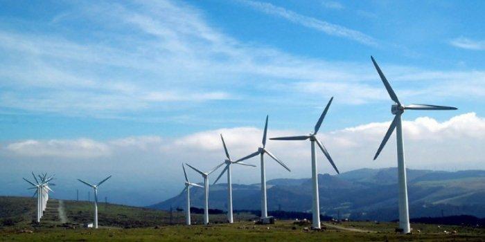Elektrownia wiatrowa; fot. pixabay