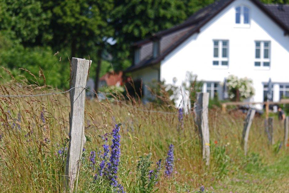 Eksperci łumaczą, że po tylu miesiącach życia w zamknięciu więcej ludzi zamarzyło o prywatnej przestrzeni z ogródkiem, fot. Pixabay